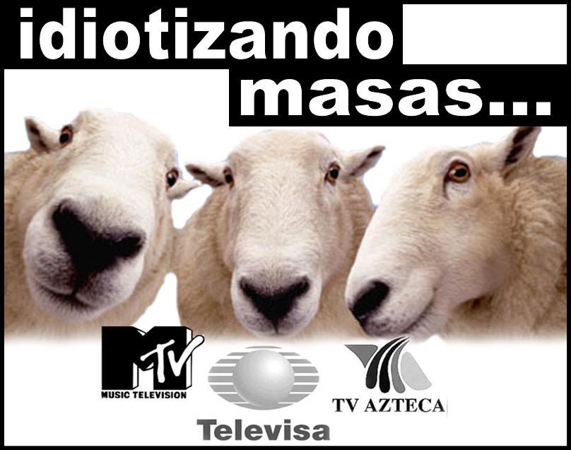 http://www.concienciaradio.com/images/borregosmtv.jpg